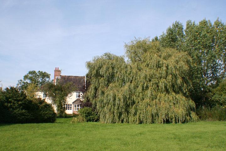 Cratfield Cattery